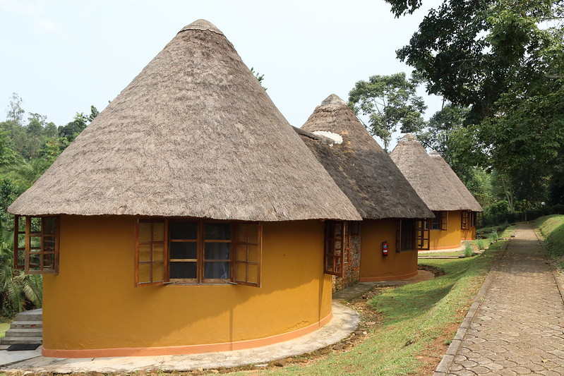 accommodation kibale